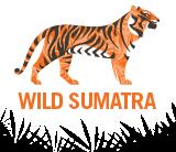 Wild Sumatra Logo