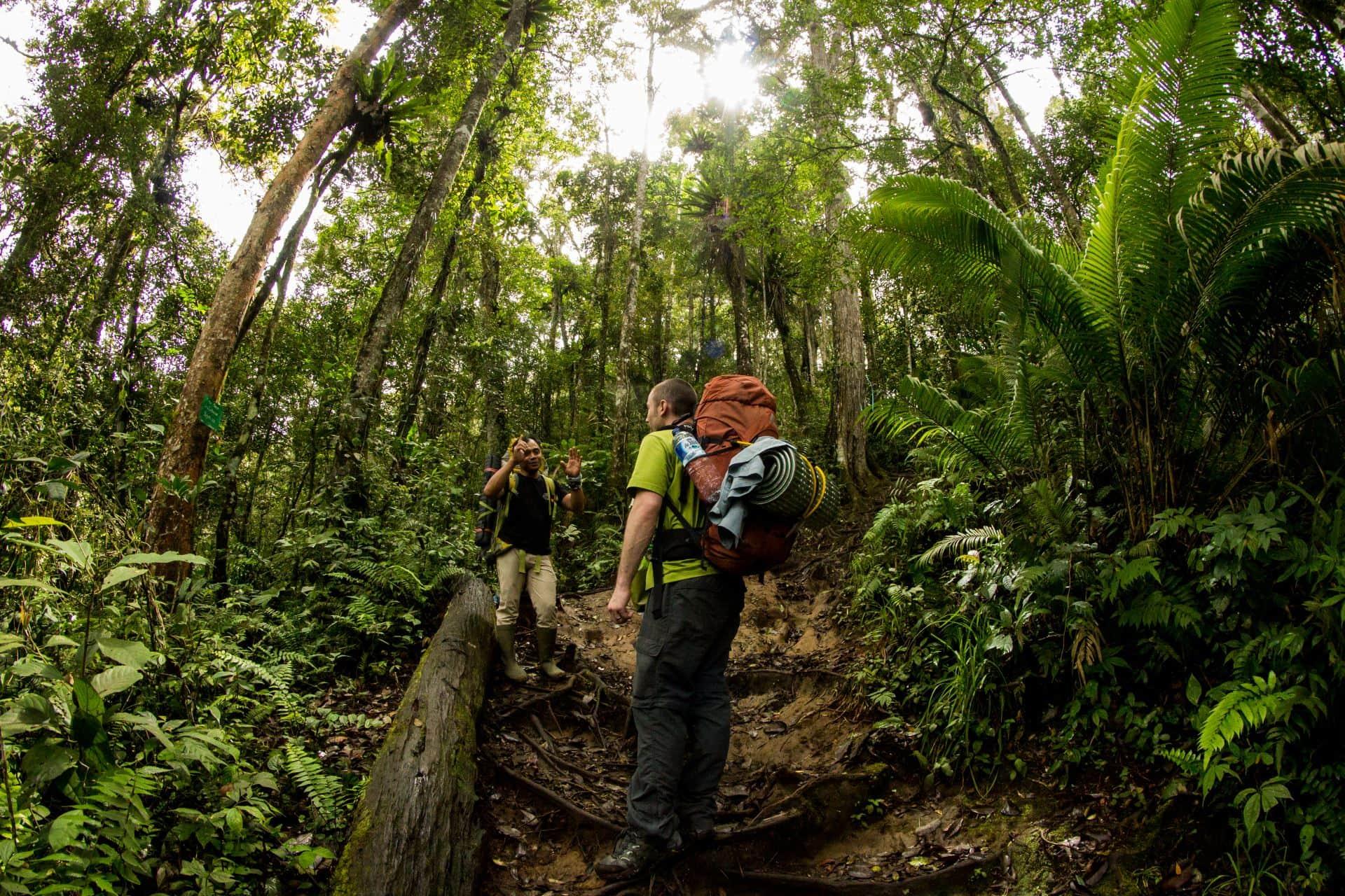 Climbing Mt. Tujuh, Ecotourism and Responsbile Travel in Kerinci Seblat National Park, Jambi, Sumatra, Indonesia