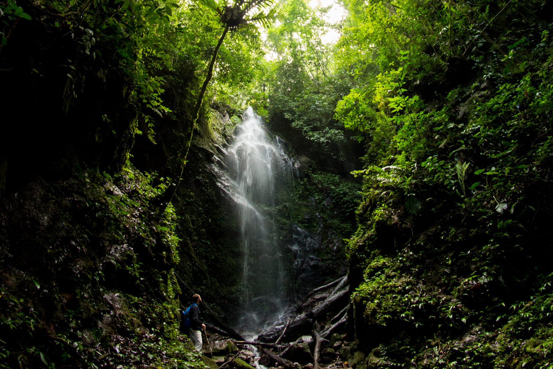 Bukit Tapan Waterfall Sumatra jungle trekking Rainforest hiking ecotourism